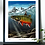 Thumbnail: (Limited Edition) Glacier Brook Trout - Poster