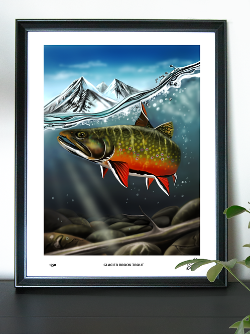 (Limited Edition) Glacier Brook Trout - Poster