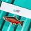 Thumbnail: Coho Salmon - Magnet