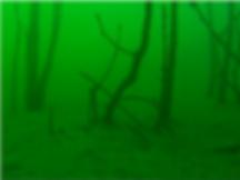 Curso de Mergulho - FRANCA - RIFAINA - SP