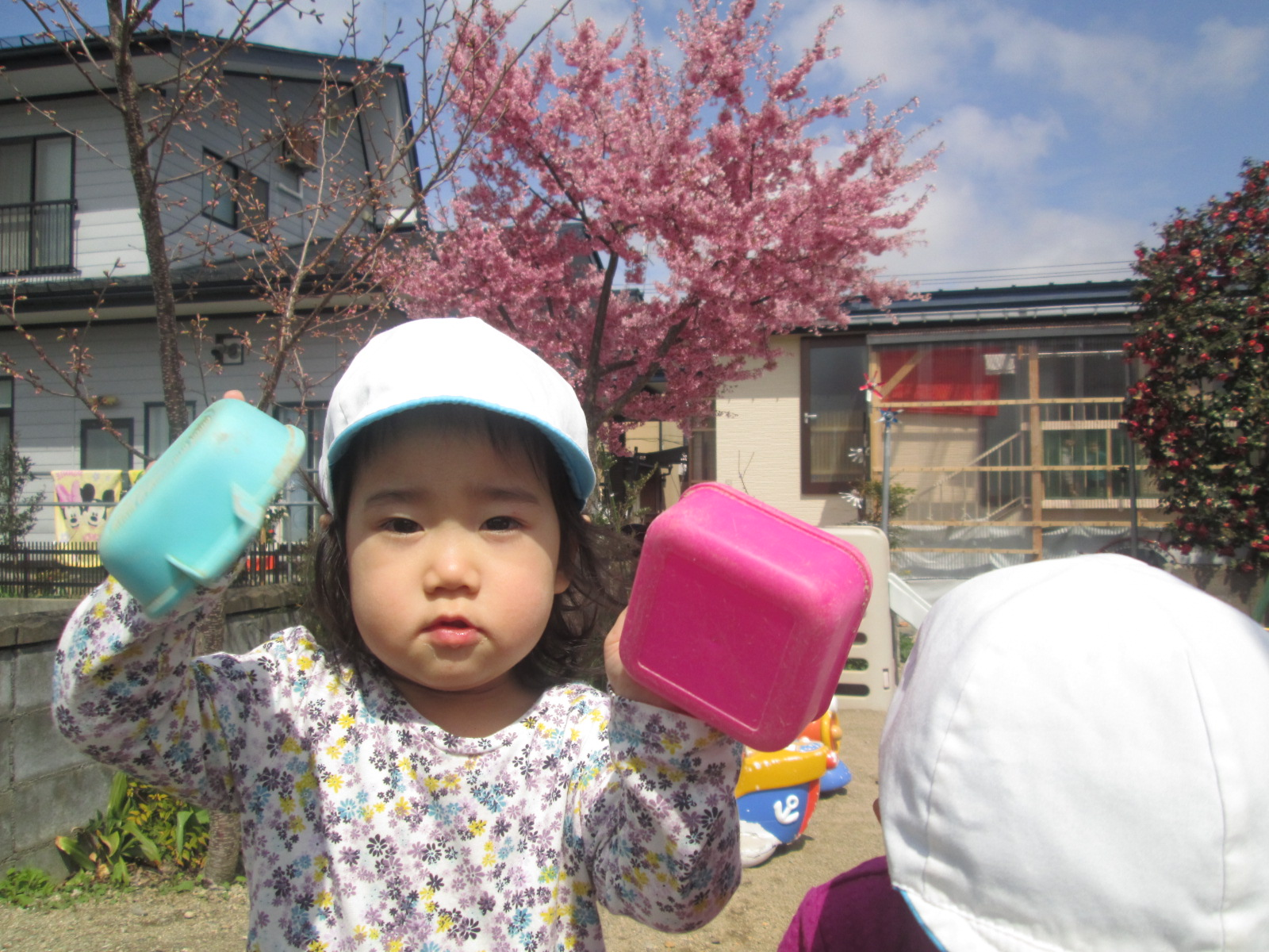 平成28年度4月 お花見