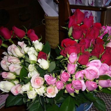 菊池洋子の薔薇