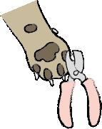 爪切り.png