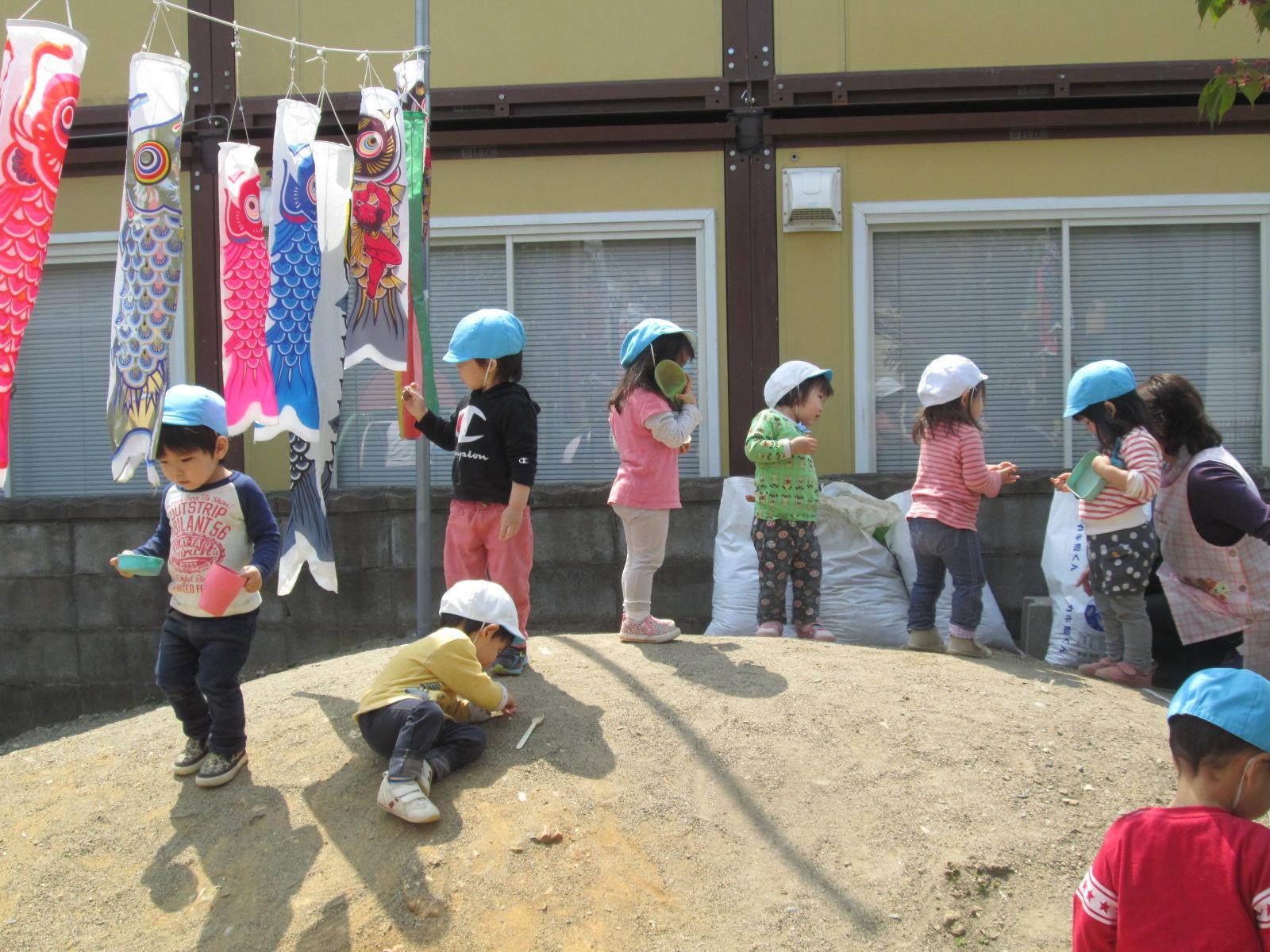 平成28年度6月 鯉のぼり祭