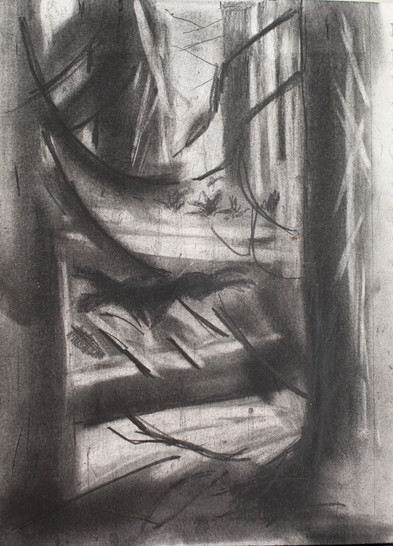 Forest 3, 2019, graphite on paper7x 10