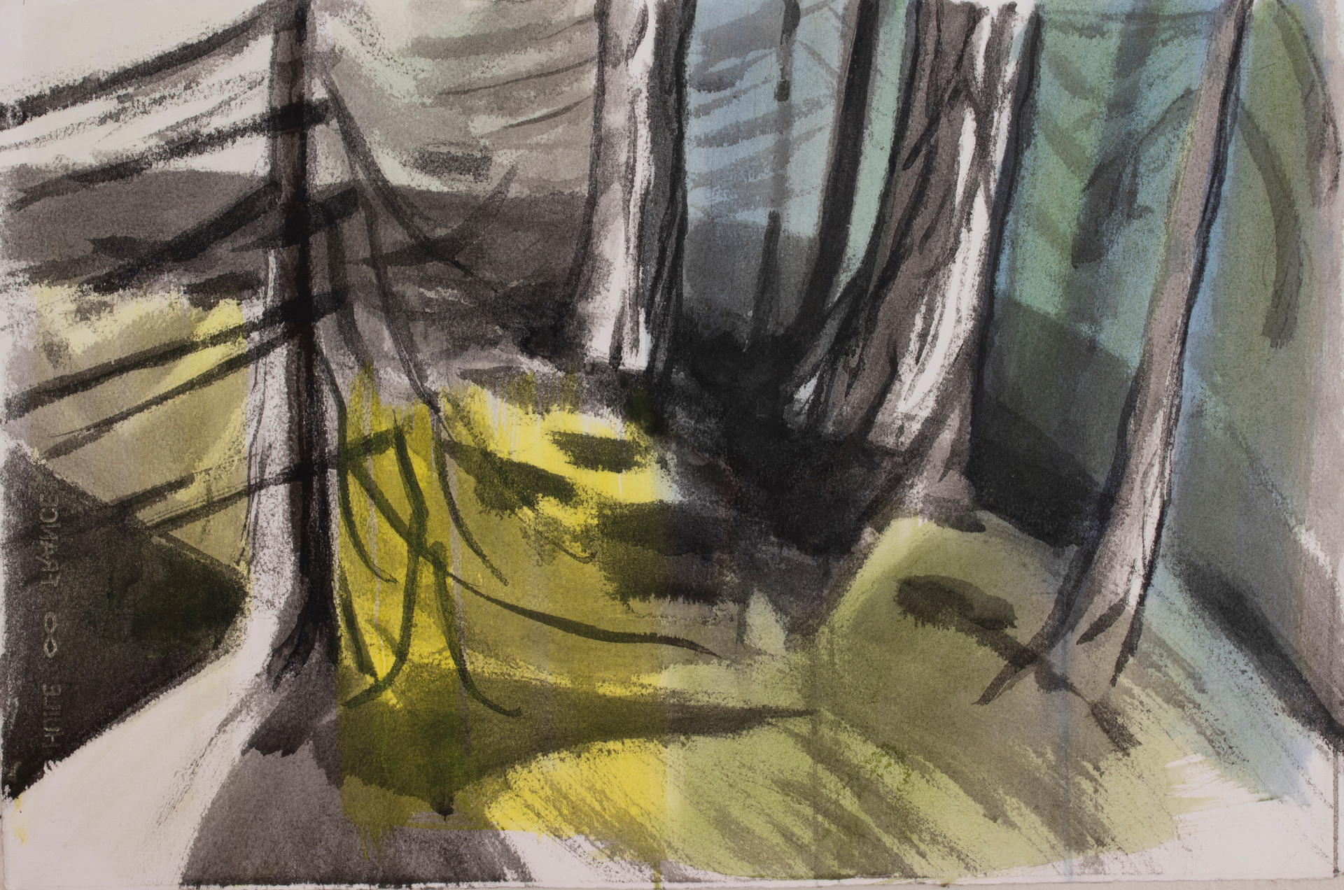 Forest Light, 2020, india ink and oil on Arches oil paper, 22x 15