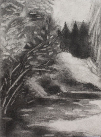 Mountain View Drive, 2019, graphite on paper, 7x 10