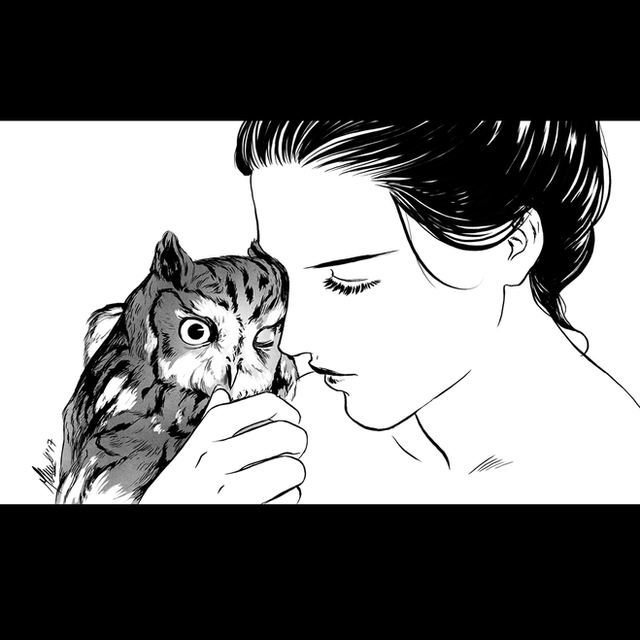 SCREECH (OWL)
