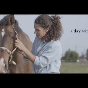 Zašto i kako volim konje?
