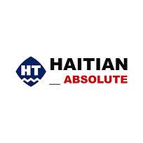 Absolute Haitian Logo