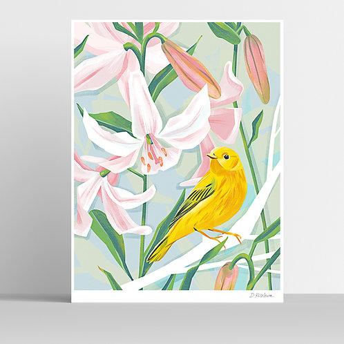 Yellow Warbler Poster 31x41 cm