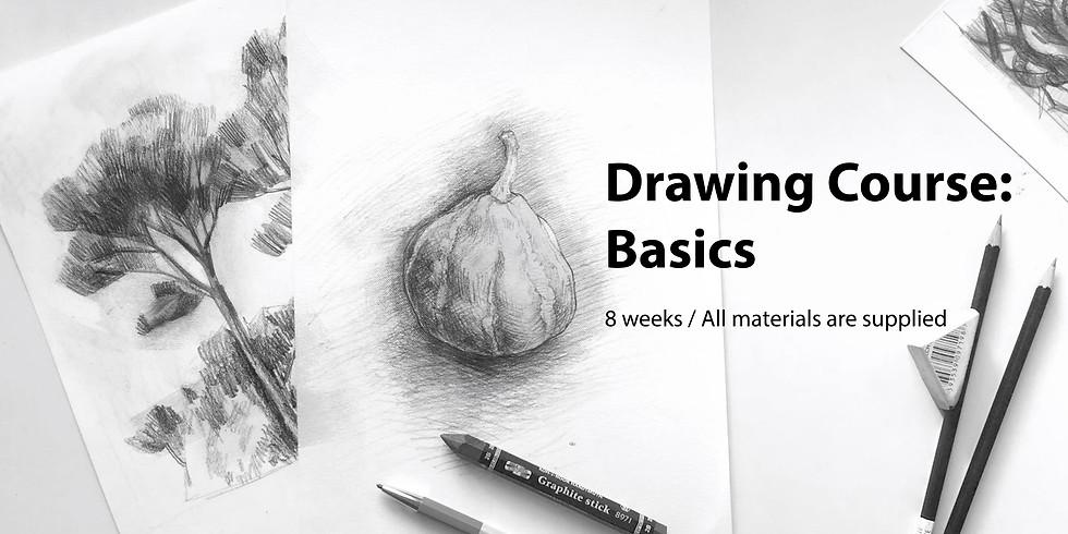 Drawing Course: Basics