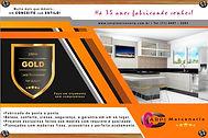 folder 01 laranja gold.jpg