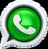 Logo-WhatsApp-01.png