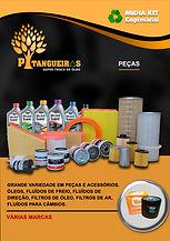 PAG-8.jpg