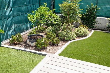 Decking-near-garden-bed-with-plants-and-