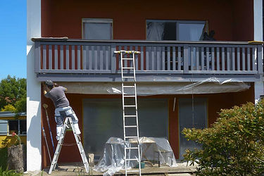 pro-house-painter-using-ladder.jpg