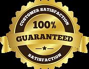 satisfaction100.png