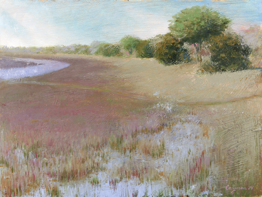 (SOLD) Marsh Landscape