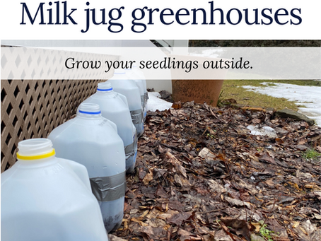 Get a jump start on your garden.