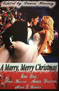 Merry marry xmas cover.JPG