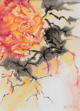 Rikottu ruusu