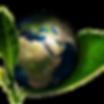 Crédits carbone | SÈME événements