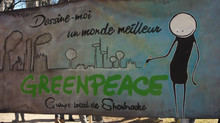 Le groupe local de Greenpeace Sherbrooke reprend du service!