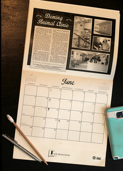 Calendar for First New Mexico Bank