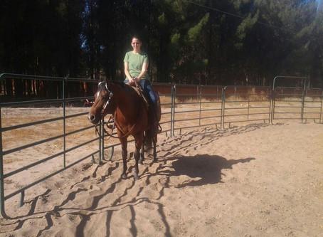 City Girl Meets a Horse