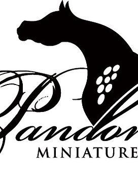 Pandoras-black-on-white.jpg