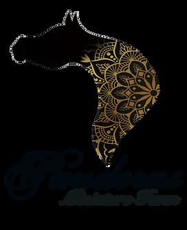 p logo copy.png