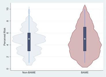 BAME figure 2.jpg