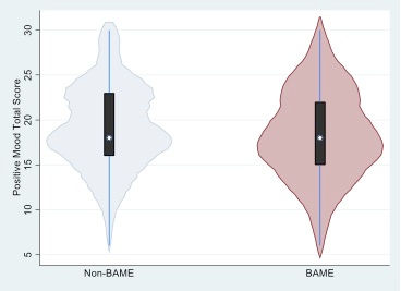BAME Figure 1.jpg