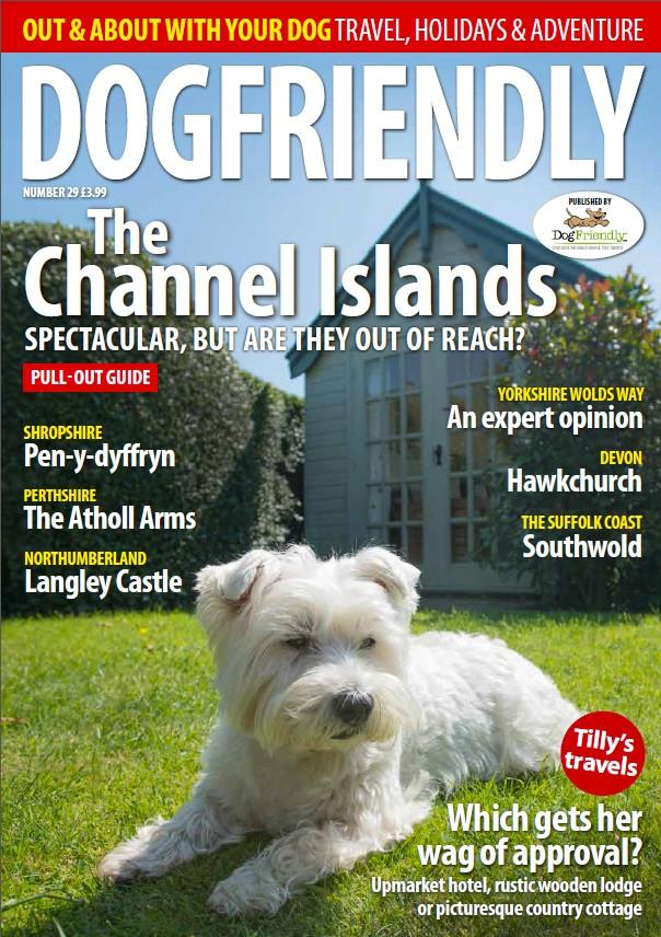 Dog Friendly Cover 29.jpg