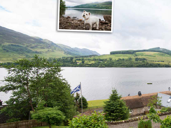 Dog Friendly Review: Briar Cottage