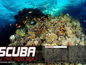 What's so great about diving in the Red Sea?