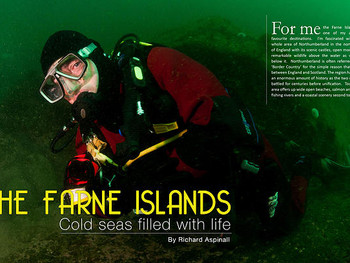 Diving the Farne Islands with Richard Aspinall