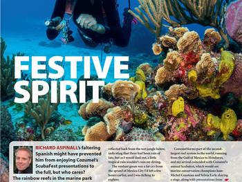 Festive Spirit