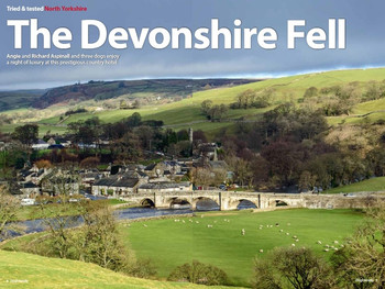 Review of the lovely Devonshire Fell hotel for Dog Friendly magazine