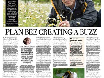 Plan 'Bee'