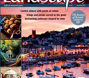Eight-page feature in LandScape