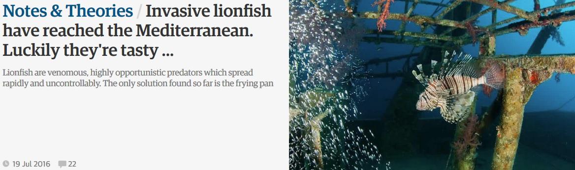 Guardian article by Richard Aspinall