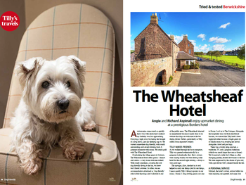 Tilly's Travels take us to The Wheatsheaf
