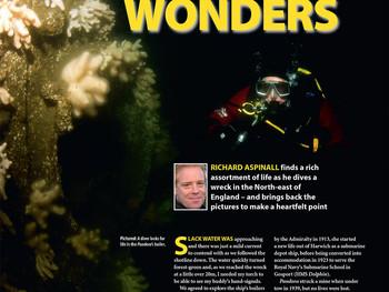 UK diving's hidden wonders