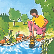 Jung Sump pump illustration pond