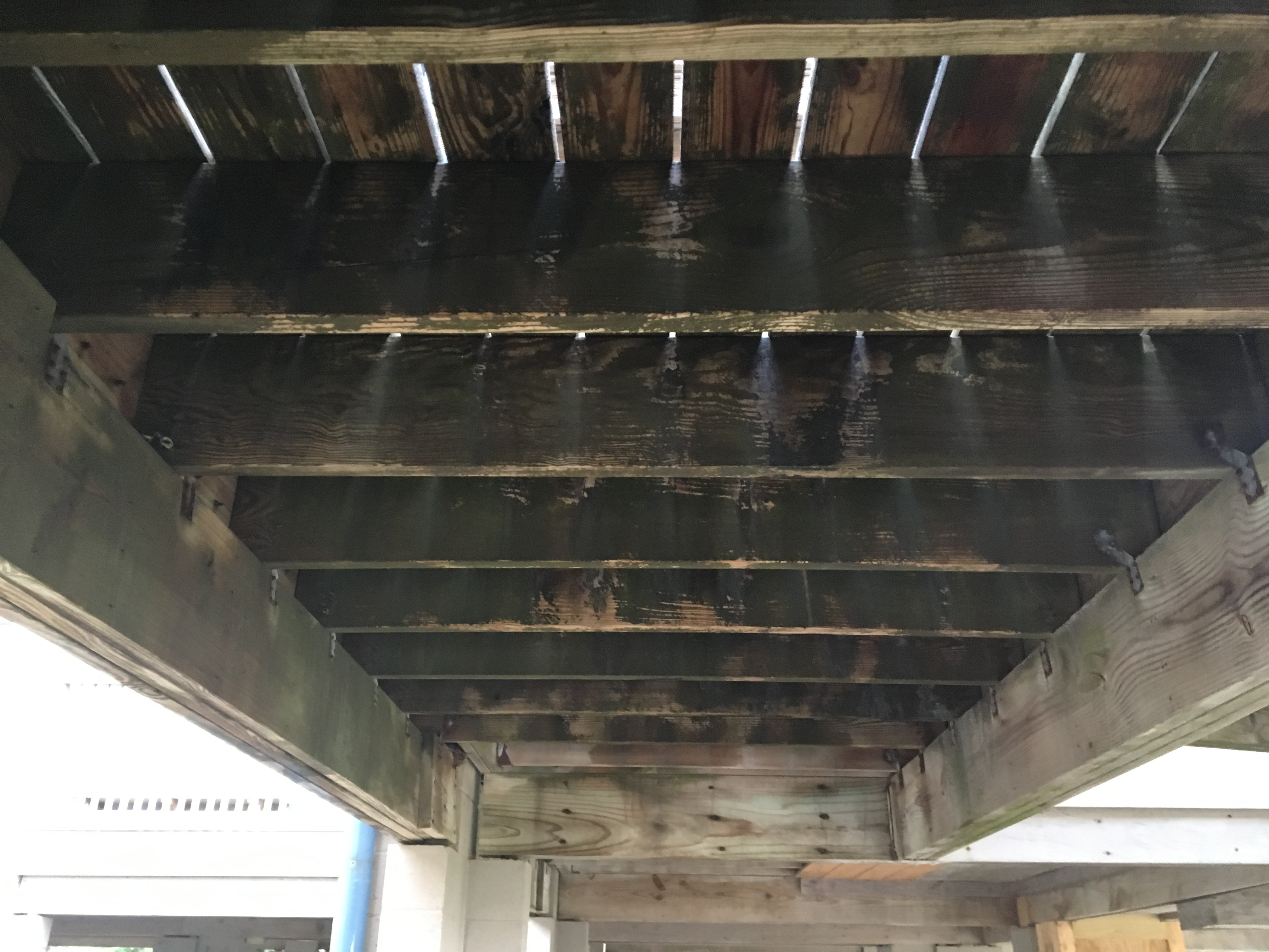 UNDER DECK CLEANING-BEFORE