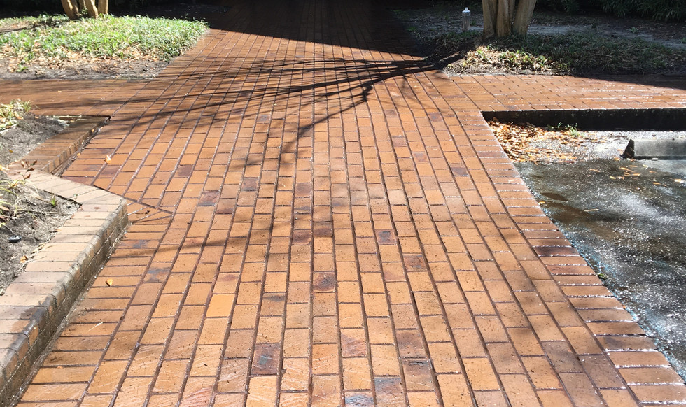 Brick Walkway Cleaning-After