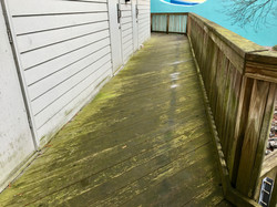 Wood Deck Cleaning-Before