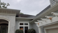 Roof Cleaning-Before